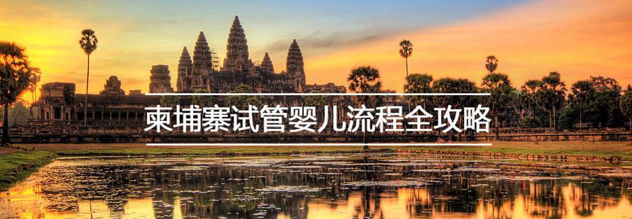 柬埔寨试管婴儿完全攻略(绿桥)