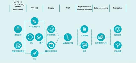 第三代试管技术筛查流程图示