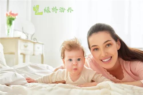 了解深圳试管婴儿价格情况