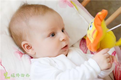 介绍第二代试管婴儿